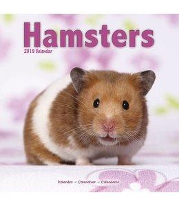 Avonside Hamster Kalender 2019