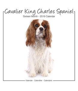 Avonside Cavalier King Charles Spaniel Kalender Studio Range 2019