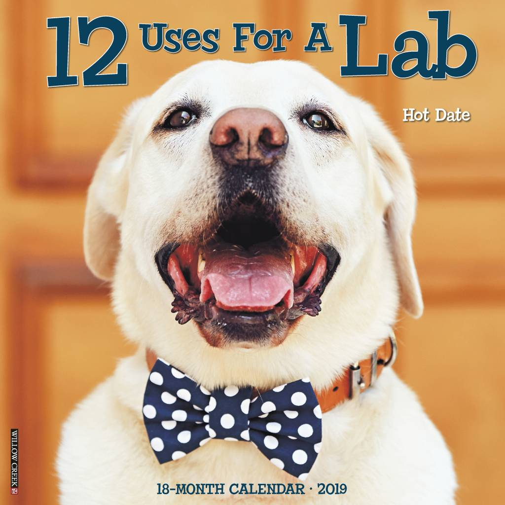 12 Uses for a Lab Kalender 2019
