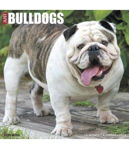 Willow Creek Engelse Bulldog Kalender 2019