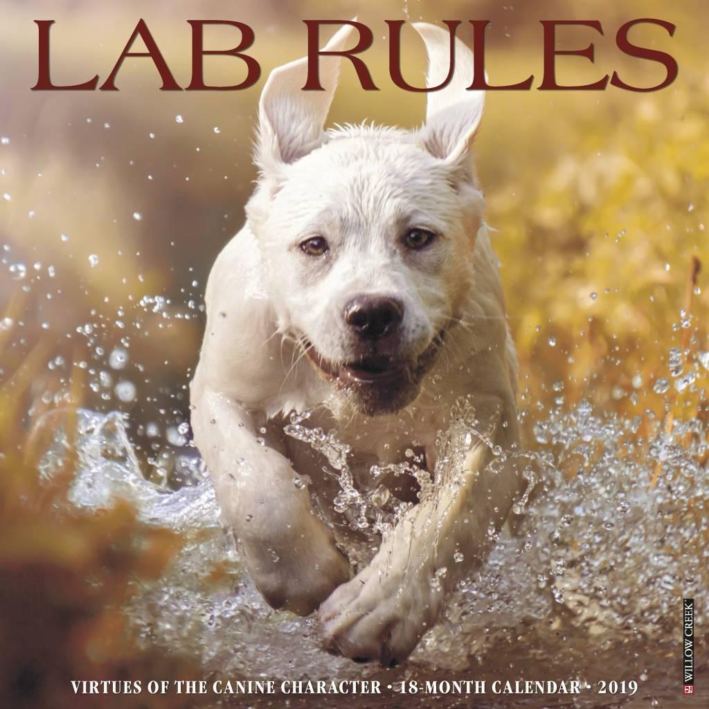 Lab Rules Kalender 2019