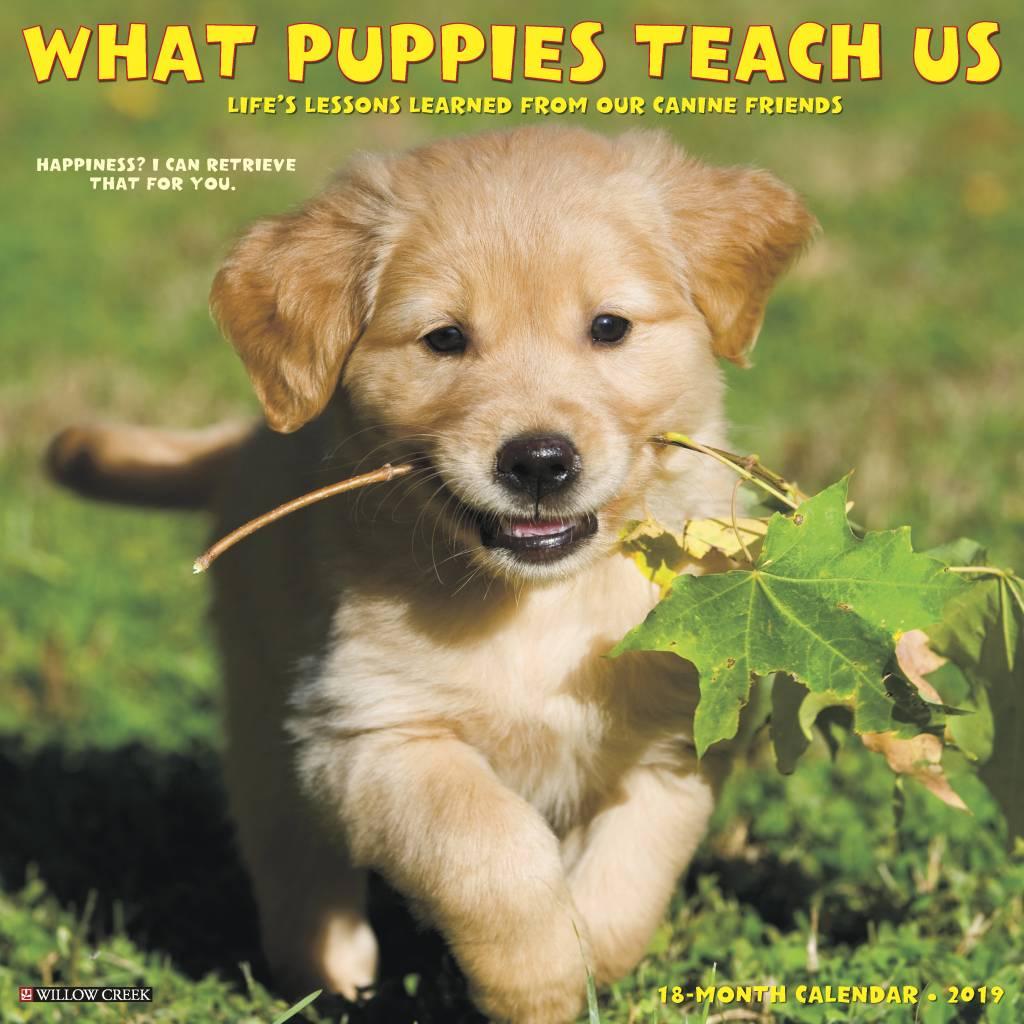 What Puppies Teach Us Kalender 2019