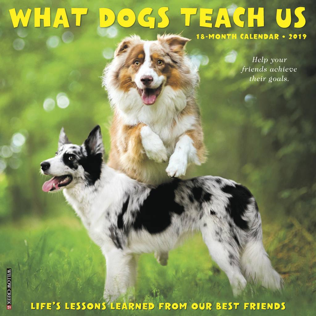 What Dogs Teach Us Kalender 2019