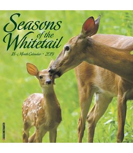 Willow Creek Seasons of the Whitetail Kalender 2019