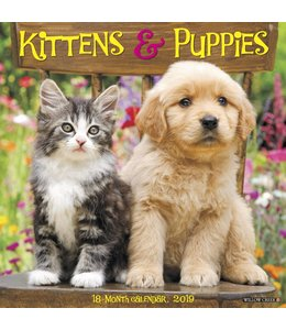 Willow Creek Kittens and Puppies Kalender 2019