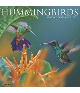 Willow Creek Hummingbirds Kalender 2019