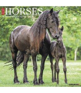 Willow Creek Horses Kalender 2019
