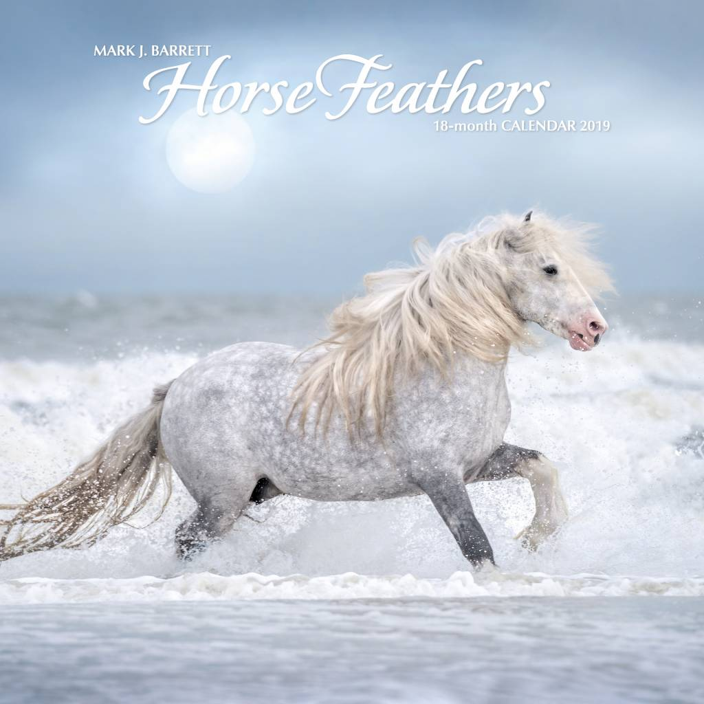 Horse Feathers Kalender 2019