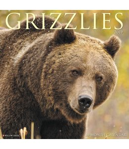 Willow Creek Grizzlies Kalender 2019