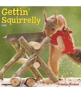 Willow Creek Gettin Squirrelly Kalender 2019