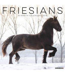 Willow Creek Friese Paarden Kalender 2019