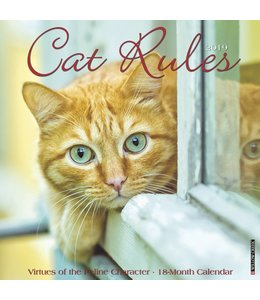 Willow Creek Cat Rules Kalender 2019
