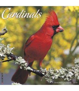 Willow Creek Cardinals Kalender 2019