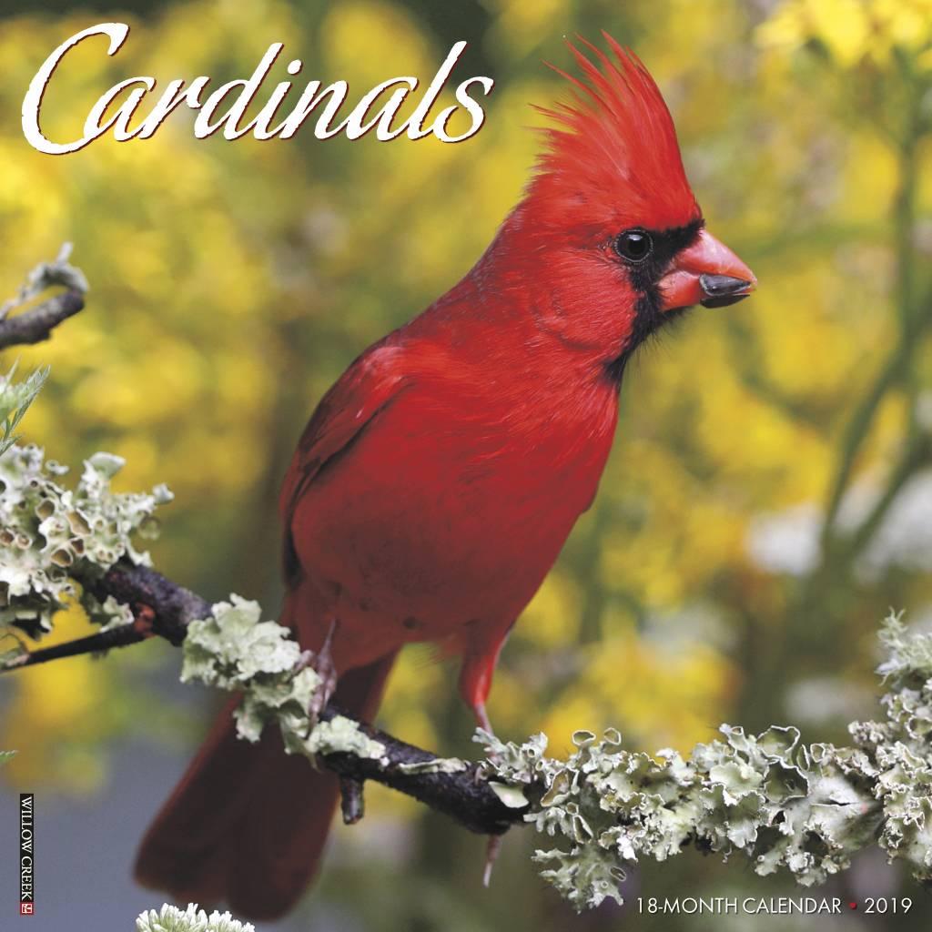Cardinals Kalender 2019