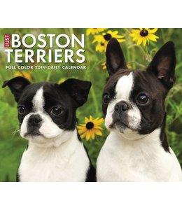 Willow Creek Boston Terrier Kalender 2019 Boxed