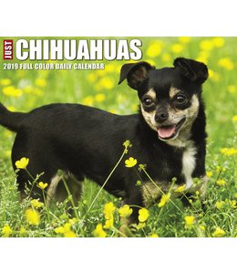 Willow Creek Chihuahua Kalender 2019 Boxed