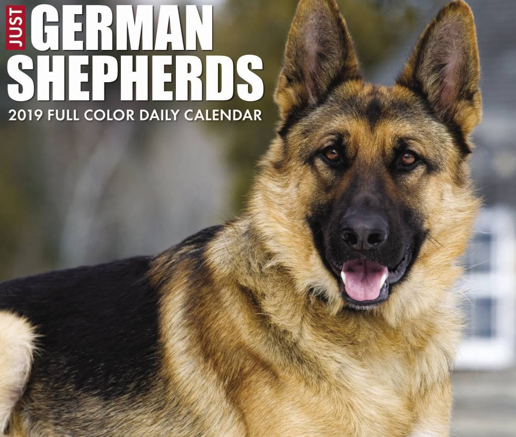 Duitse Herder Kalender 2019 Boxed