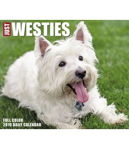 Willow Creek West Highland White Terrier Kalender 2019 Boxed