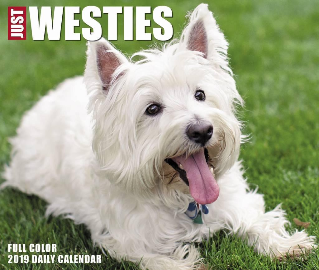 West Highland White Terrier Kalender 2019 Boxed