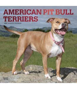Browntrout American Pit Bull Terrier Kalender 2019
