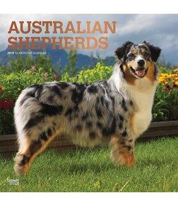 Browntrout Australian Shepherd Kalender 2019