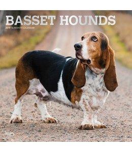 Browntrout Basset Hound Kalender 2019