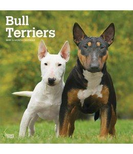 Browntrout Bull Terrier Kalender 2019