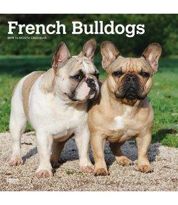 Browntrout Franse Bulldog Kalender 2019