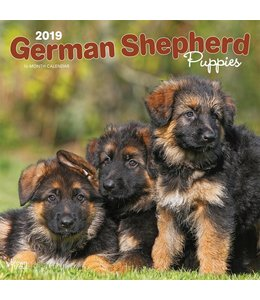 Browntrout Duitse Herder Kalender Puppies 2019