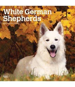 Browntrout Witte Herder Kalender 2019