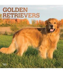 Browntrout Golden Retriever Kalender 2019