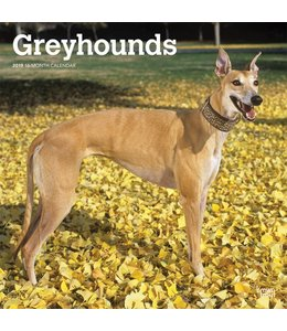 Browntrout Greyhound Kalender 2019
