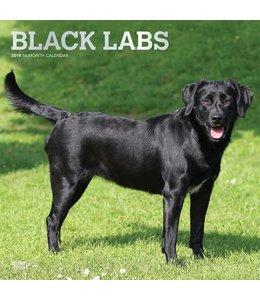 Browntrout Labrador Retriever Zwart Kalender 2019
