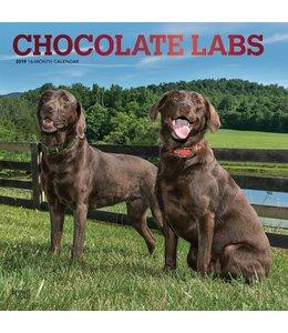 Browntrout Labrador Retriever Bruin Kalender 2019