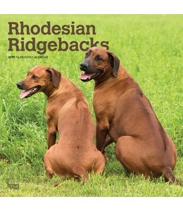 Browntrout Rhodesian Ridgeback Kalender 2019