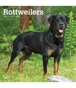 Browntrout Rottweiler Kalender 2019