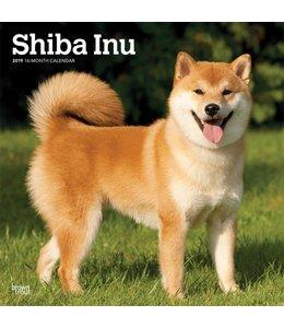 Browntrout Shiba Inu Kalender 2019