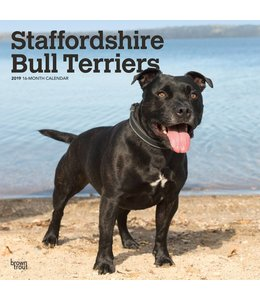 Browntrout Staffordshire Bull Terrier Kalender 2019