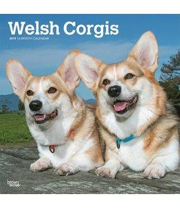 Browntrout Welsh Corgi Kalender 2019