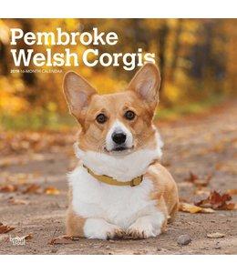 Browntrout Welsh Corgi Pembroke Kalender 2019