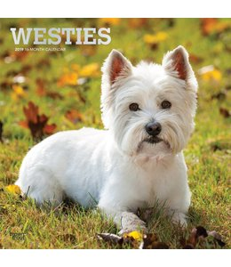 Browntrout West Highland White Terrier Kalender 2019