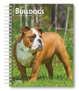 Browntrout Engelse Bulldog Agenda 2019