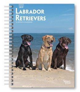 Browntrout Labrador Retriever Mixed Agenda 2019