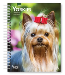 Browntrout Yorkshire Terrier Agenda 2019