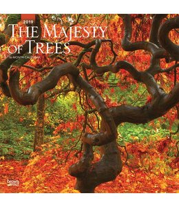 Browntrout The Majesty of Trees Kalender 2019
