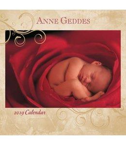 Andrews McMeel Anne Geddes Kalender 2019
