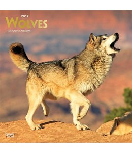 Browntrout Wolven Kalender 2019
