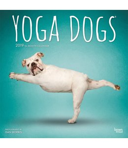 Browntrout Yoga Dogs Kalender 2019