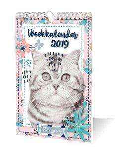 Inter-Stat Rachael Hale Kittens Weekkalender 2019