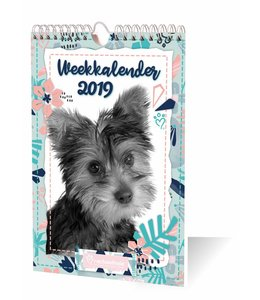 Inter-Stat Rachael Hale Puppy's Weekkalender 2019